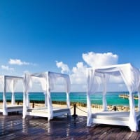Free Luxury Travel Trends White Paper